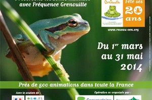 frequence_grenouille